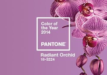 Color of the Year 2014: PANTONE 18-3224 Radiant Orchid