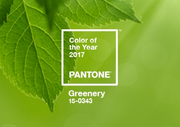 Color of the Year 2017: PANTONE 15-0343 GREENERY