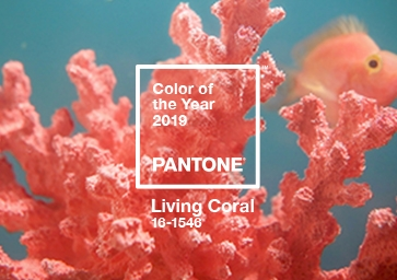 Color of the Year 2019: PANTONE 16-1546 Living Coral